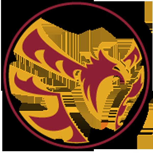 Vilanova BJJ Logo